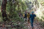 Bàn giải pháp bảo vệ rừng, nâng cao đời sống người dân Tây Nguyên