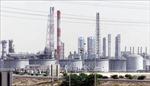 Saudi Arabia, Iraq cam kết tuân thủ đầy đủ thỏa thuận OPEC+