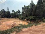 Khai thác đất đồi ở Ba Vì: 'Phớt lờ'công luận, đồi vẫn bị 'gặm'nham nhở