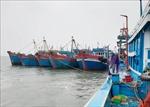 Tàu cá ở Nghệ An chấp hành nghiêm các quy định về phòng, chống dịch COVID-19