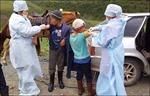 Nga yêu cầu 14.000 người dân gần biên giới với Mông Cổ tiêm vaccine ngừa dịch hạch