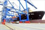 Hàng hóa thông qua cảng biển có xu hướng giảm về cuối năm