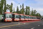 Cần Thơ khai trương 5 tuyến xe buýt nội tỉnh không trợ giá