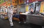 Hàn Quốc ghi nhận số ca nhiễm mới trong nước thấp nhất trong 44 ngày