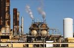 OPEC đang đối mặt với thời điểm vô cùng khó khăn trong lịch sử 60 năm