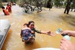 Nhận tiền cứu trợ trong dòng nước lũ vẫn ngập sâu