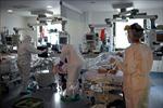 WHO cảnh báo hệ thống y tế thế giới có thể quá tải