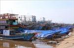 Từ 20 giờ ngày 26/10, Quảng Ngãi cấm tàu thuyền ra biển