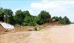 Nỗ lực khắc phục sạt lở đê bao tại cồn Thanh Long, Vĩnh Long