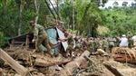 Vụ sạt lở tại Nam Trà My: Chạy đua với thời gian, tìm kiếm người mất tích