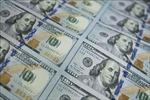 Giá USD ra sao sau khi Ngân hàng Nhà nước giảm mạnh giá mua vào?