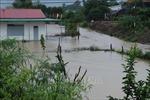 Mưa lớn kéo dài gây nhiều thiệt hại tại Đắk Lắk
