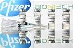 Pfizer hy vọng sẽ sản xuất vắc-xin COVID-19 vượt nhu cầu vào cuối năm 2021