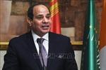 Ai Cập, Jordan thúc đẩy tiến trình hòa bình Palestine-Israel