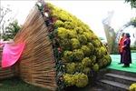 Mô hình bó hoa chậu cúc mâm xôi được xác lập kỷ lục lớn nhất Việt Nam