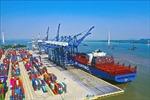 Hãng tàu nắm quyền chi phối, giá cước vận chuyển biển khó giảm