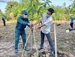 Thành phố mang tên Bác hưởng ứng Tết trồng cây