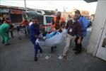 Ai Cập bố trí 11 bệnh viện tiếp nhận người Palestine bị thương từ Dải Gaza