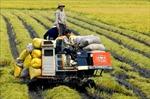 Thúc đẩy nông nghiệp, kinh tế - xã hội nông thôn phát triển nhanh, bền vững