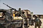 Hàng chục binh sĩ Niger thương vong do bị phục kích