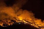 Nắng nóng gay gắt khiến Thổ Nhĩ Kỳ, Hy Lạpvất vả đối phó với cháy rừng
