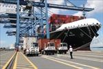 Hàng container qua cảng biển giữ đà tăng trưởng cao