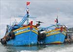 Bà Rịa-Vũng Tàu khôi phục hoạt động các cảng cá, tàu cá