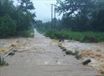 Gia Lai: Mưa lớn khiến nhiều nơi tại thành phố Pleiku ngập cục bộ