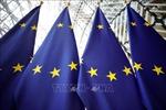 Năm nước EU tuyên bố thành lập lực lượng phản ứng nhanh