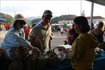 Khánh Hòa: Khai mạc Lễ hội trái cây Khánh Sơn lần thứ I