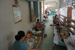 TP Hồ Chí Minh bước vào mùa cao điểm sốt xuất huyết và tay chân miệng