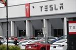 Doanh số xe ô tô điện toàn cầu trong quý 1 năm 2021 tăng 140%