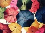 Thơ trào phúng: Dẹp nạn ô dù