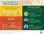 Thêm 10 sự kiện biến đổi gen sử dụng làm thực phẩm và thức ăn chăn nuôi được EU cấp phép