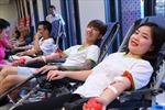 Khoảng 500 tình nguyện viên tham gia Ngày hội hiến máu nhân đạo 2019