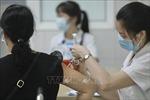 Hồ sơ của vaccine Nano Covax đã được chuyển sangHội đồng Tư vấn cấp giấy đăng ký lưu hành thuốc