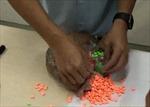 Thu giữ hơn 14 kg ma túy trong hàng chuyển phát nhanh