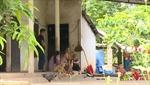 Tiếp tục điều tra vụ nghi bị đầu độc bằng thuốc sâu ở Phú Thọ