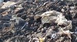 Xe container đổ trộm hàng chục tấn chất thải rắn bị phát hiện