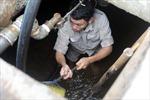 Hà Nội: Các mẫu nước sạch sông Đà xét nghiệm ngày 19/10 đều đạt quy chuẩn về Styren