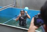 Nhật Bản công bố giải pháp xử lý ô nhiễm sông Tô Lịch và Hồ Tây