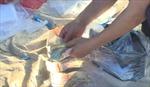 Bắt 19 đối tượng đánh bạc dịp Tết tại Đắk Lắk