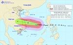 Bão số 9 cường độ rất mạnh, mưa rất to từ Thừa Thiên - Huế đến Phú Yên