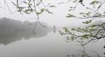 Thời tiết ngày 22/10: Bắc Bộ sáng sớm có sương mù, Nam Bộ có mưa rào và dông