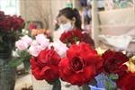 Giá hoa tươi tăng cao, hồng bất tử được nhiều người chọn mua dịp 8/3