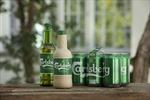 Carlsberg tiến gần hơn tới việc hiện thực hóa chai bia 'giấy' đầu tiên trên thế giới