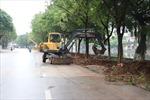 Nhiều giải pháp khắc phục tình trạng ngập úng trong thành phố