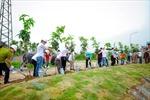 Bảo vệ môi trường, xã hội hóa toàn dân trong phong trào trồng cây gây rừng