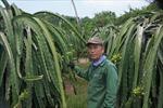 Vốn chính sách lan tỏa ở những vùng khó khăn của Bình Thuận