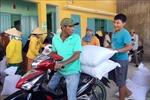 Xuất cấp gạo cho 5 tỉnh dịp Tết Nguyên đán
